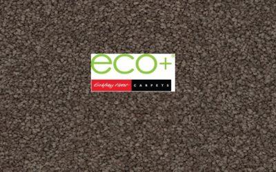 Eco+ Soft Haze II