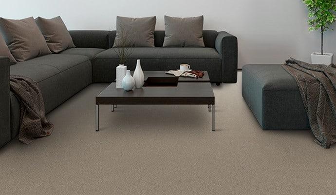 Sequel Carpet