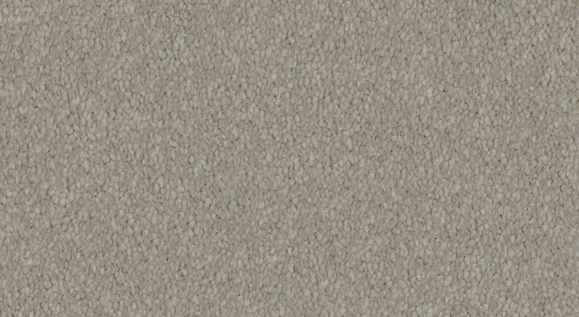 Elegant Reflections Carpet